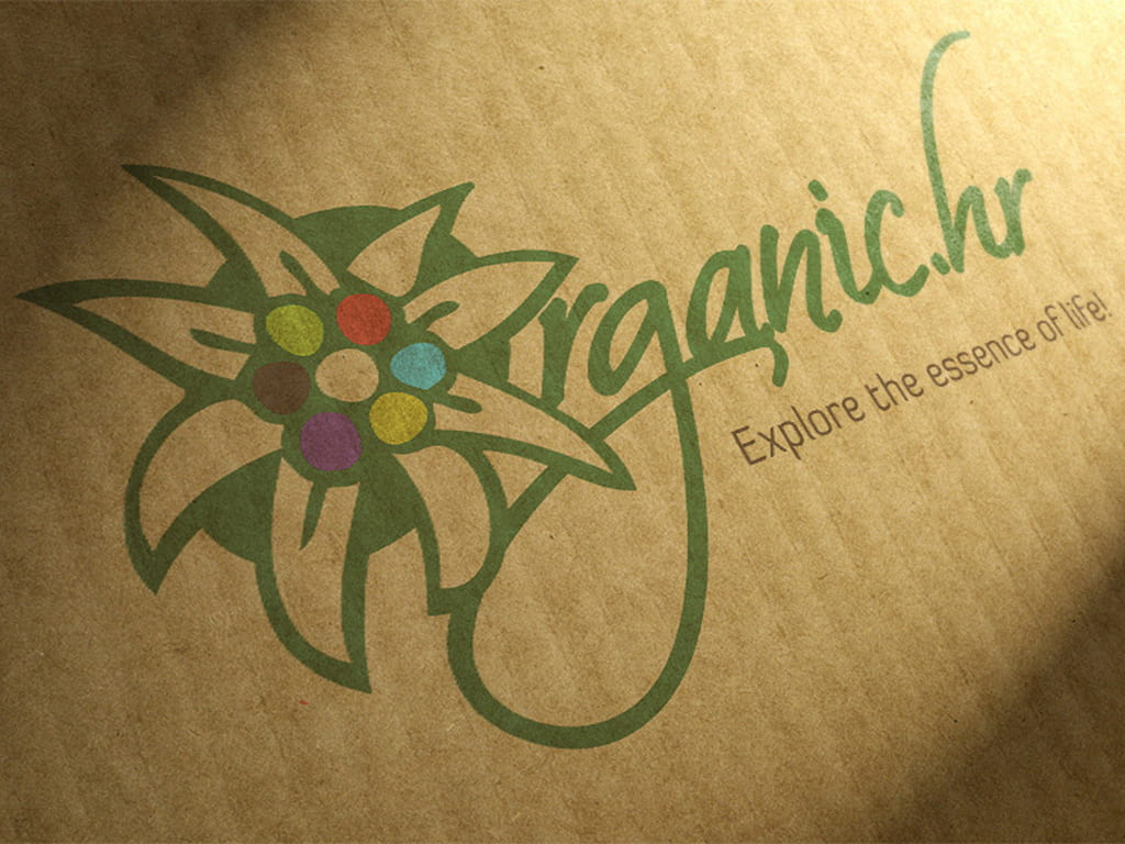 organic google adwords kampanja by radionica