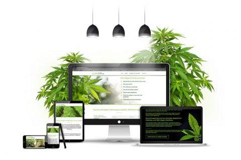 Prezentacijska web stranica za LLHH